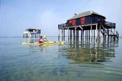 le-teich-bassin-arcachon-tourisme-sortie-en-kayak-de-mer